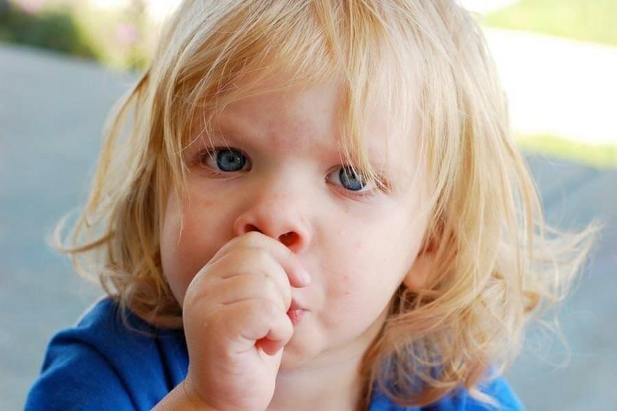 Как отучить ребенка брать все рот: советы педиатров и доктора комаровского