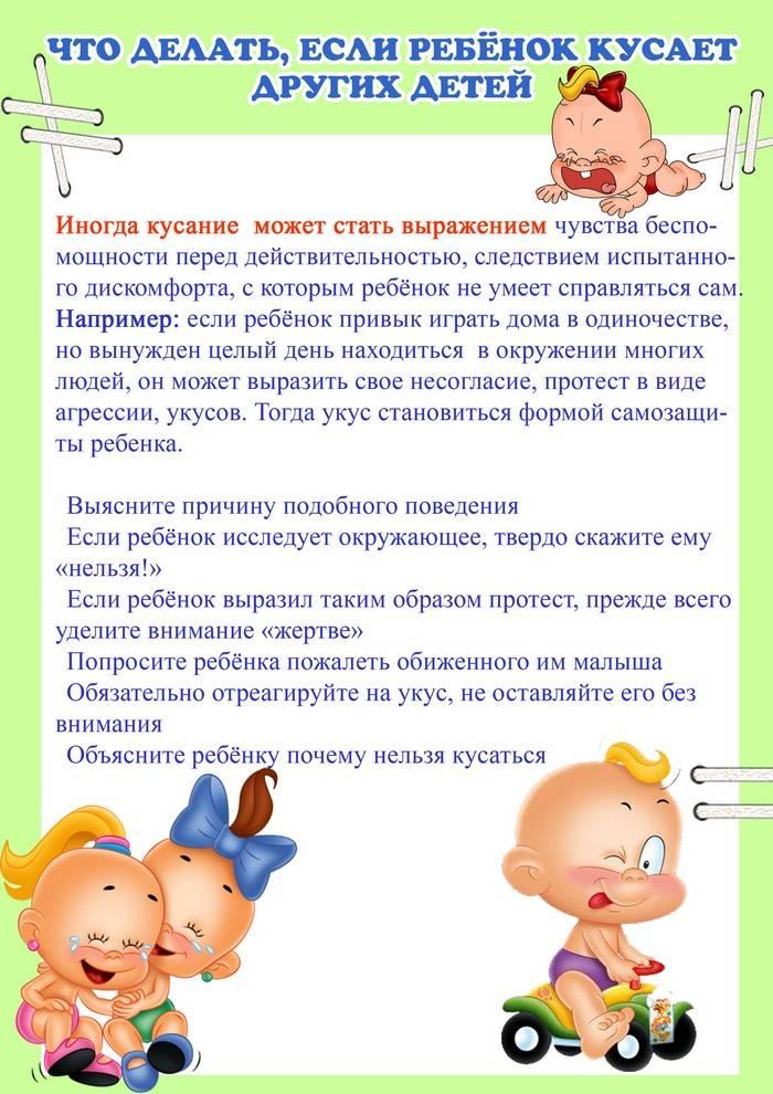 Комаровский - ребенок дерется с родителями: что делать в год, в 2 года в детском саду, почему кусается