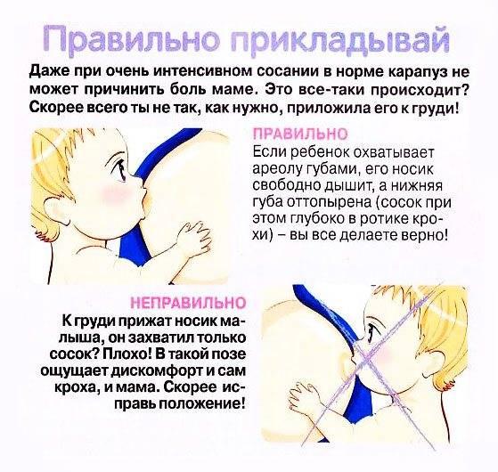"""Причины и лечение лактостаза у кормящей матери   проблемы и решения   медицинский центр """"лактовита""""   москва"""