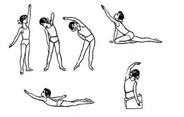 Упражнения при сколиозе | сеть клиник «здравствуй!»