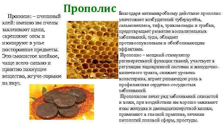 Мумие — лечебные свойства и способ применения