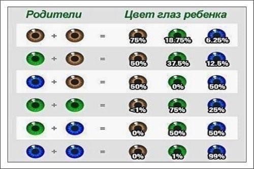 В каком возрасте у детей меняется цвет глаз и почему