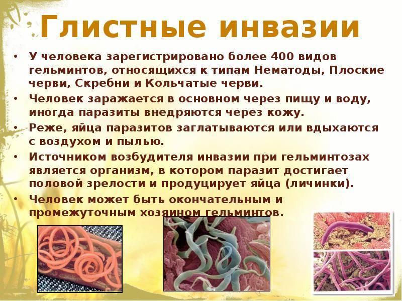 Как избавиться от глистов и других паразитов? отвечает врач-инфекционист