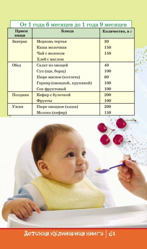 Меню ребенка в 1 год: питание и рацион на грудном и искусственном вскармливании, сколько ребенок должен есть в 1 год, чем кормить, график кормления