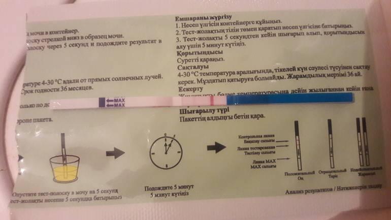 Общий анализ мочи: когда назначается, основные показатели клинического анализа мочи. подготовка к анализу