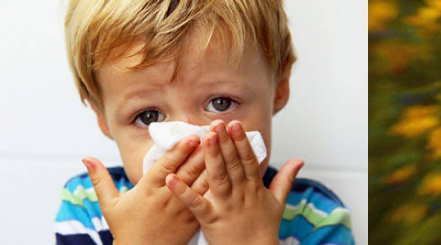 Что делать, если у ребенка осип голос — полезные статьи на сайте доктора зайцева