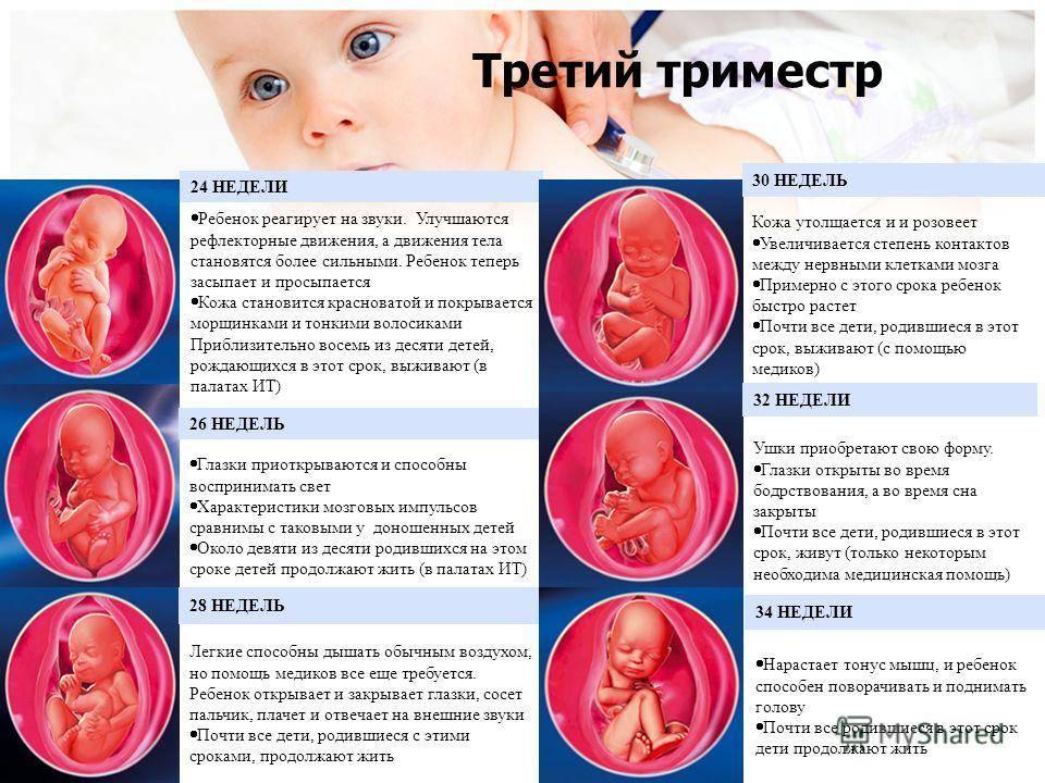 Во сколько недель (когда) начинает шевелиться ребенок, на каком сроке беременности