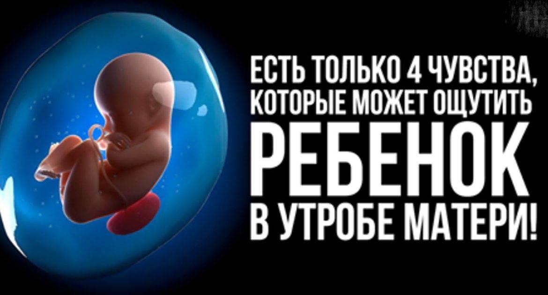 36 неделя беременности: что происходит с мамой и малышом, можно ли рожать на этом сроке?