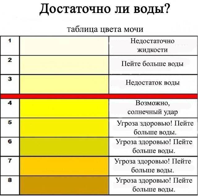 Цвет мочи у грудничка: желтая, оранжевая, прозрачная