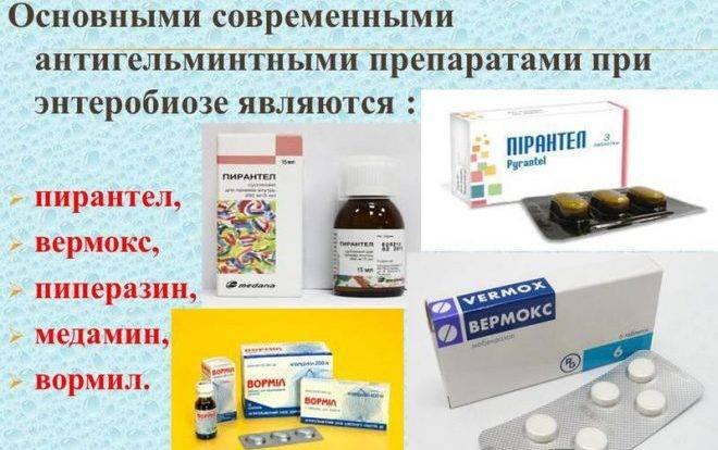 Лечение аскаридоза - медицинский портал eurolab