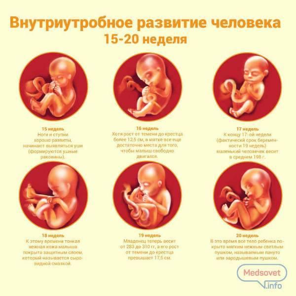 Внутриматочная терапия: заболевания плода, которые можно лечить в утробе матери