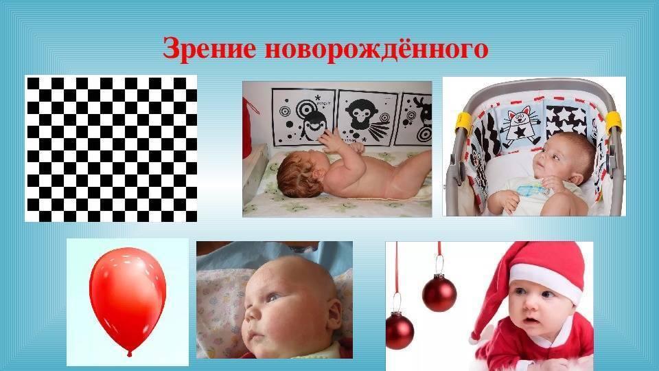 Формирование бинокулярного зрения у детей - энциклопедия ochkov.net