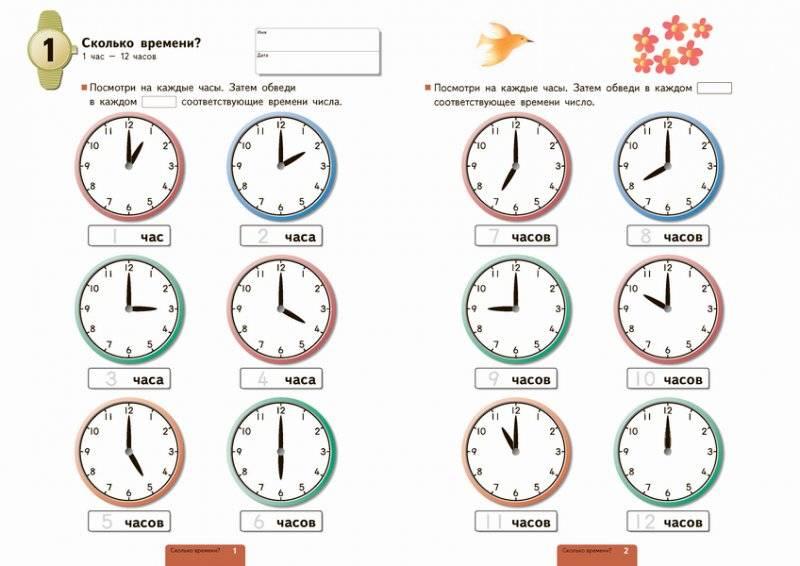 Как научить ребенка часам: советы родителям как научить определять время