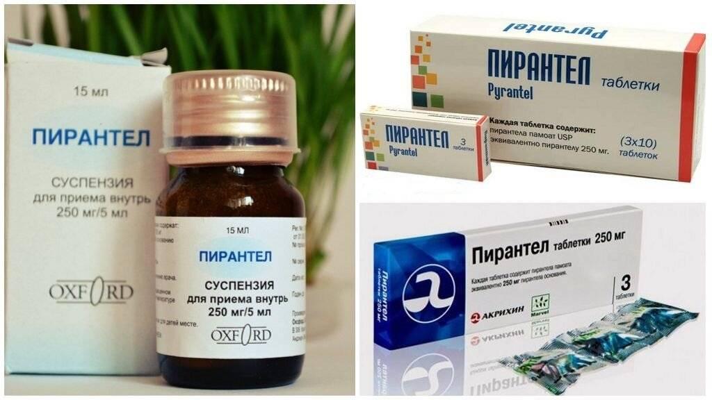 Энтербиоз: пути заражения, симптомы, диагностика и лечение - нии эпидемологии