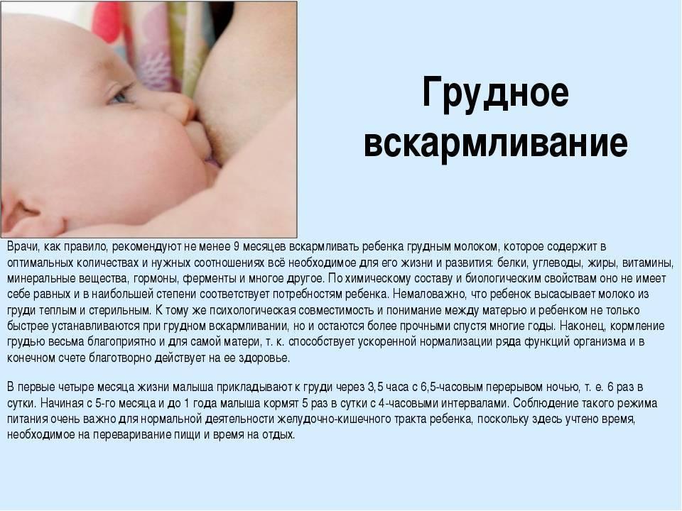 Давать ли воду новорождённому при грудном вскармливании— «за» и «против»