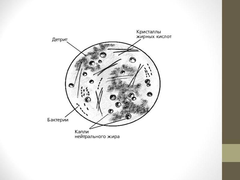 Цитологическое исследование гормонального фона (при угрозе прерывания беременности, нарушениях цикла)
