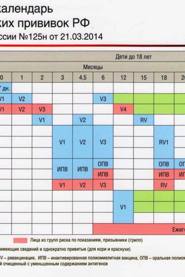 Календарь прививок для детей до 1 года с графиком по месяцам - какую вакцинацию делают в россии?