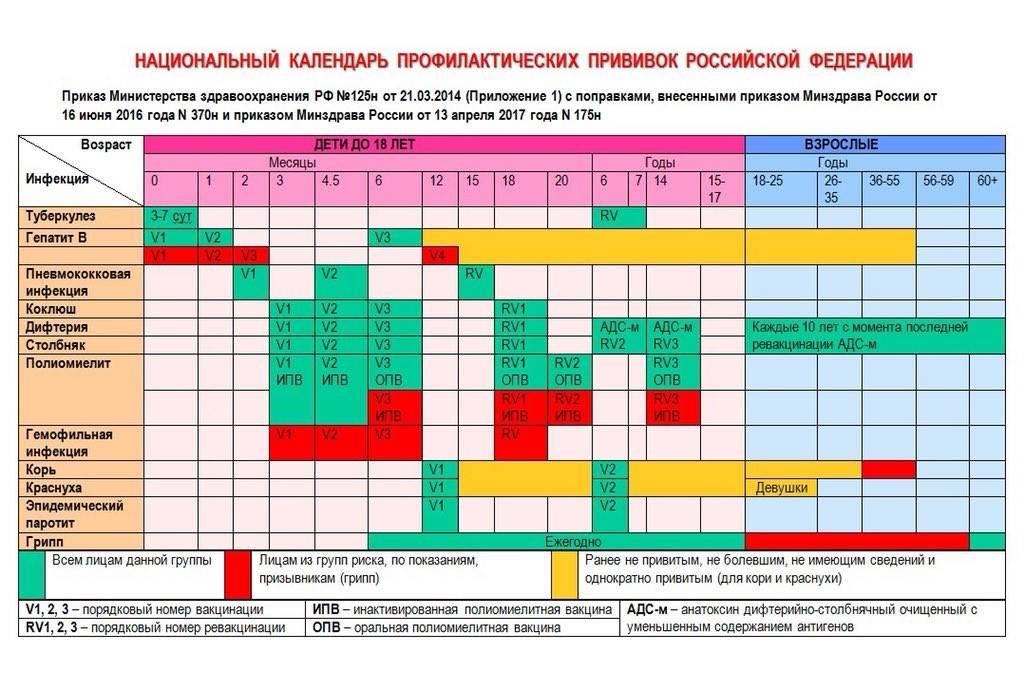 Календарь прививок для детей от рождения до 3 лет: план и таблицы с графиком вакцинации в россии