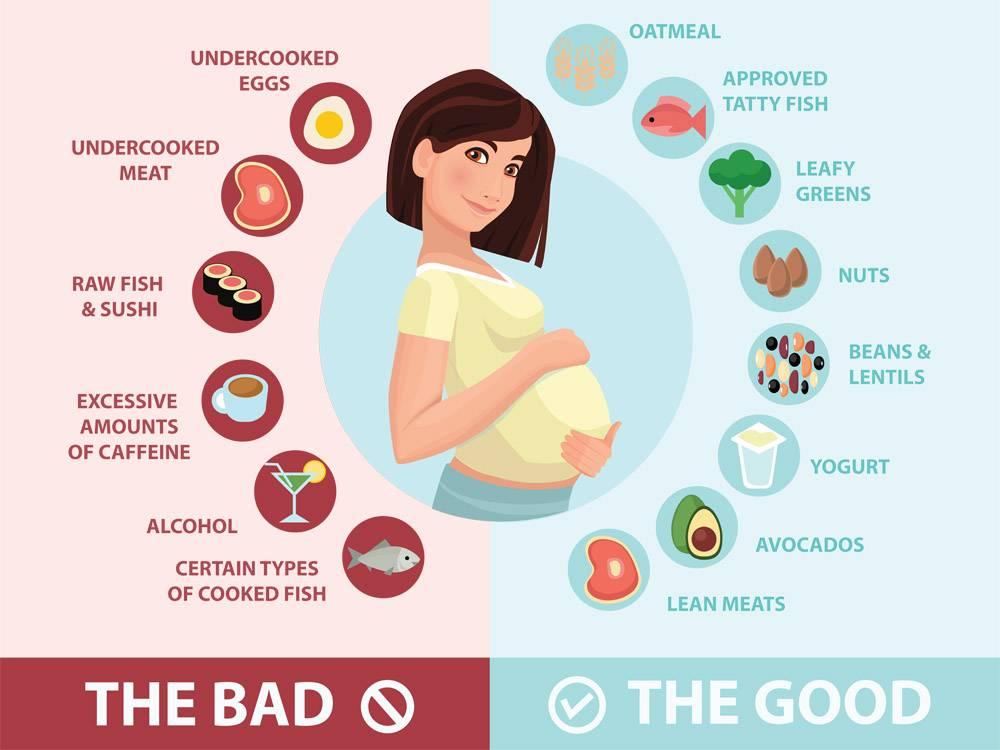 Каким должно быть питание при беременности на ранних сроках