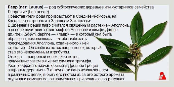 Платный аборт от 4500 рублей: в день обращения в москве, платный медикаментозный и хирургический метод прерывания беременности в клинике, цены, где сделать, куда обратиться