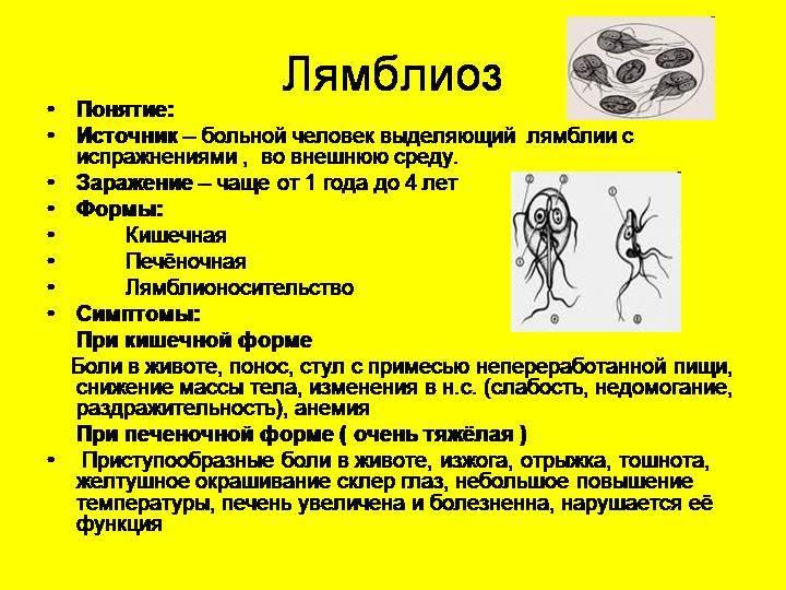 Симптомы дискинезии желчевыводящих путей и холецистита у детей - причины заболевания и первые симптомы, способы профилактики и лечение болезни