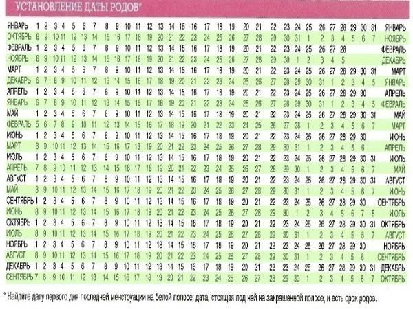 Календарь беременности по неделям - рассчитать дату родов, пол ребенка, точный срок беременности