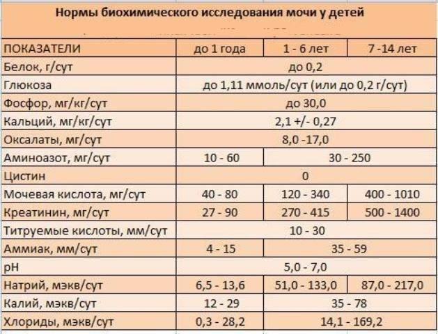 Что показывает анализ мочи по сулковичу у детей: алгоритм сбора урины, норма и расшифровка пробы