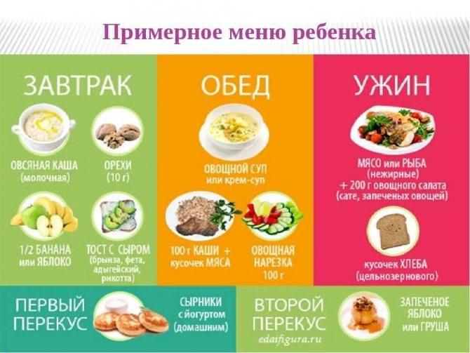 Можно ли фасоль при грудном вскармливании: польза и вред продукта для матери и ребенка при гв, а также рекомендации по употреблению бобового при лактации