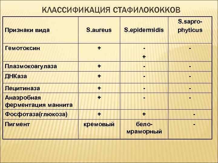 Стрептококковая инфекция у детей - симптомы болезни, профилактика и лечение стрептококковой инфекции у детей, причины заболевания и его диагностика на eurolab