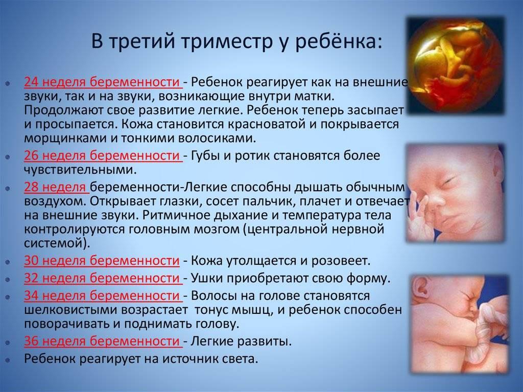 Шевеление плода при беременности: норма, на каком сроке, частые, сильные