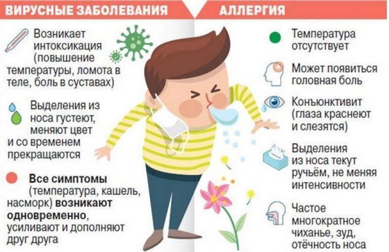➤ можно ли гулять при простуде или орви