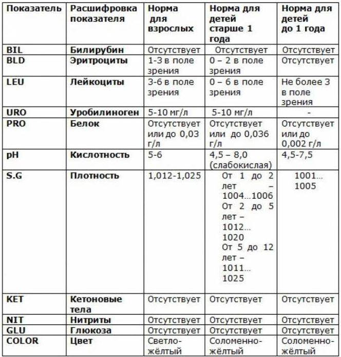Анализ мочи, расшифровка -  нормы белка, эритроцитов, лейкоцитов, глюкозы, эпителия, билирубина, цилиндров и бактерий :: polismed.com