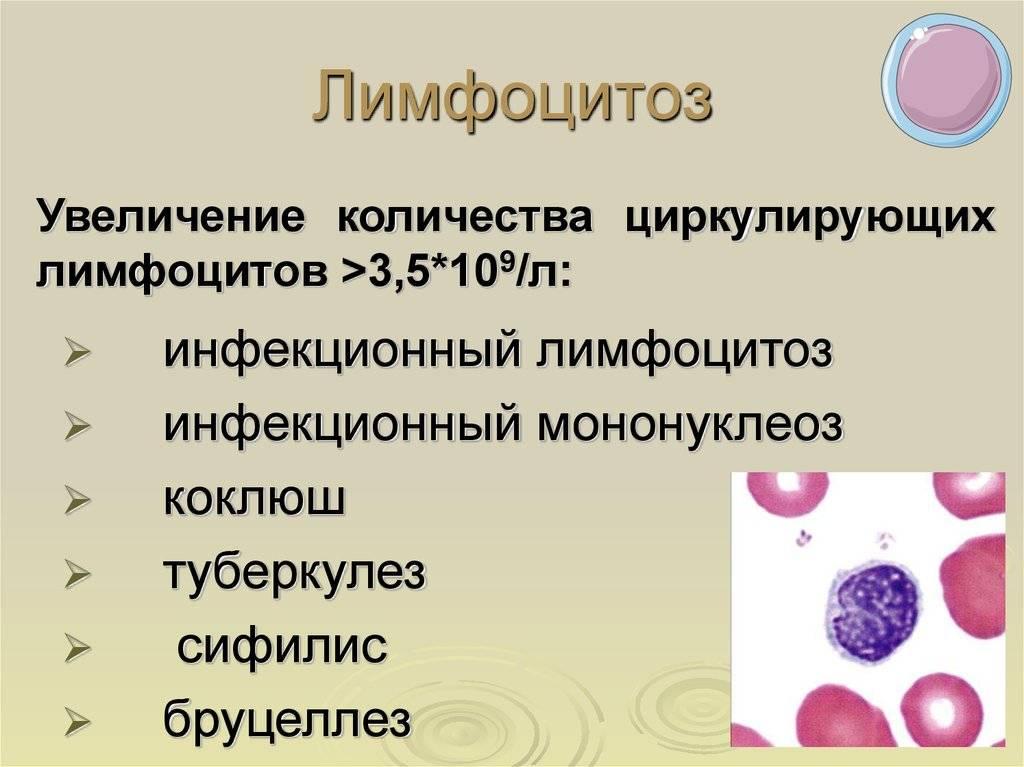 Лейкоциты повышены в крови: более 7 причин, лечение лейкоцитоза у ребенка, женщин и мужчин, как снизить уровень