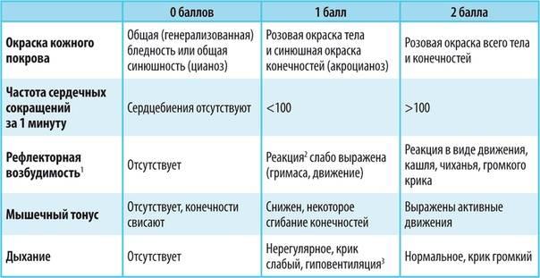 Шкала Апгар новорожденных в таблице: расшифровка баллов и нормы