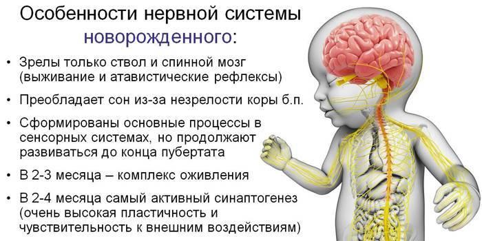 Нарушения и задержка психического развития у детей, инфантилизм