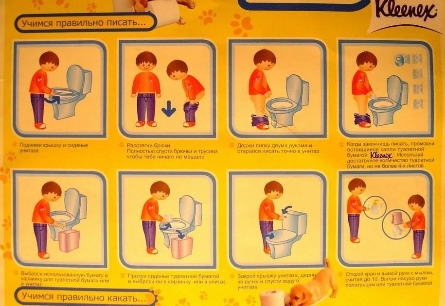 Ребенок плохо вытирает попу, что делать, как лечить?