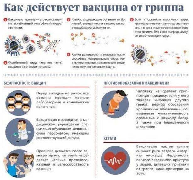 """Вопросы родителей о прививке от гриппа детям: все """"за"""" и """"против"""" вакцинации"""