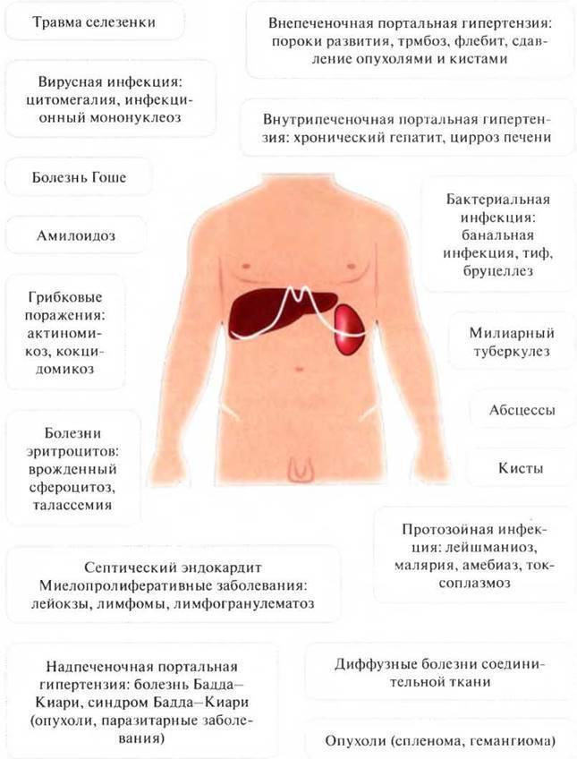 Кариес у детей: причины и лечение - энциклопедия ochkov.net
