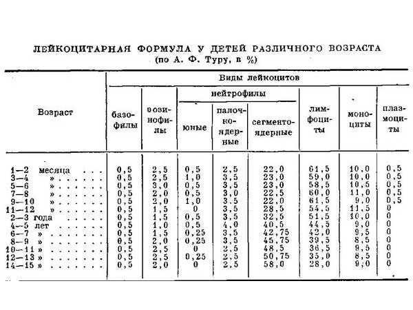 У ребенка повышены лимфоциты в крови | детские анализы в медицинской лаборатории эндомедлаб  (г. москва, м. дмитровское, м. борисово)