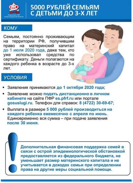 Ежемесячные пособия на ребенка в 2020 году - кому и какие положены выплаты