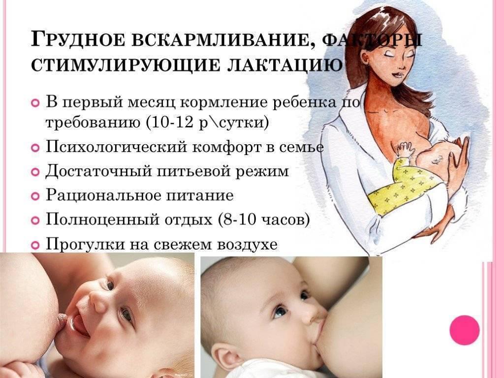Кормление грудничка по требованию или по часам: как лучше