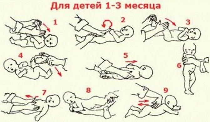 Как правильно делать массаж новорожденному от 1 до 6 месяцев в домашних условиях: советы, видео | рутвет - найдёт ответ!