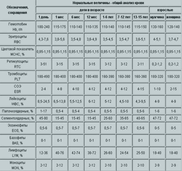 Расшифровка результатов анализа крови у взрослых и детей: норма общего (клинического) анализа