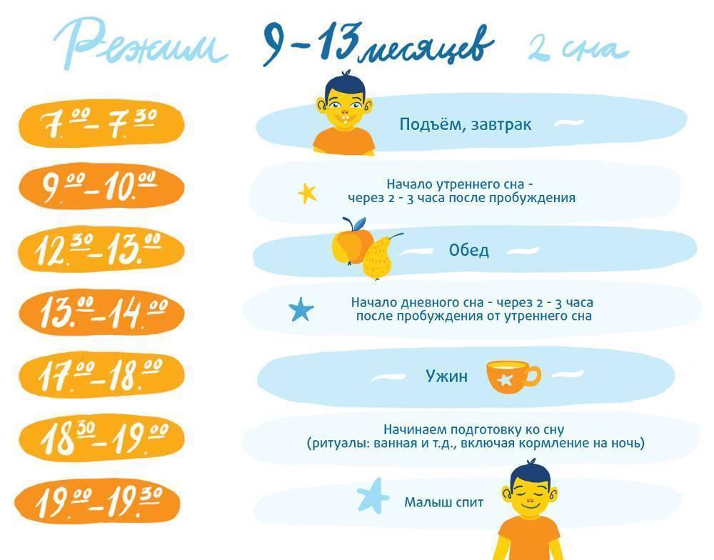 Режим дня ребенка в 9 месяцев: распорядок по часам, питание малыша