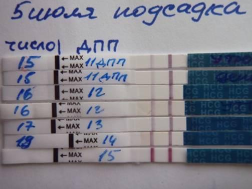 Когда и как делать тест на беременность после эко?