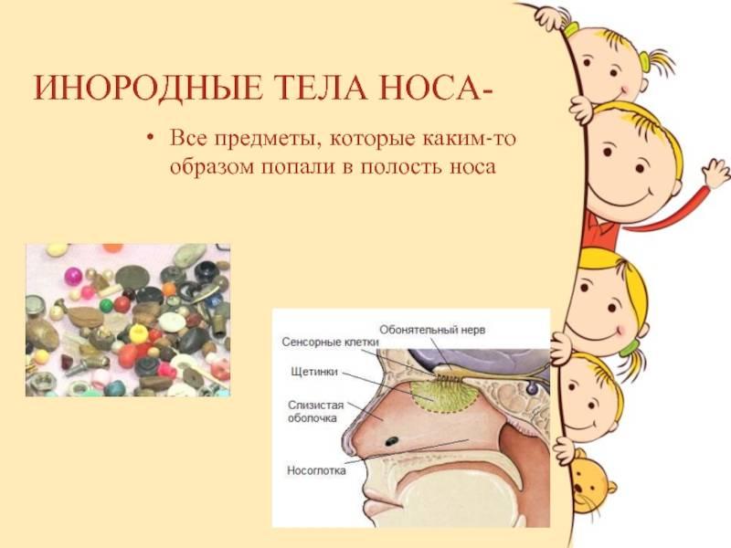 «нечаянный» музей. хирург - о предметах, которые глотают дети | здоровье | аиф красноярск