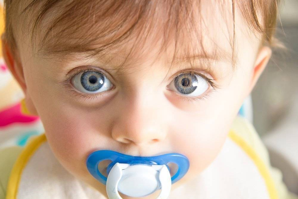 Как отучить ребенка тащить все рот: причины проблемы и пути ее устранения