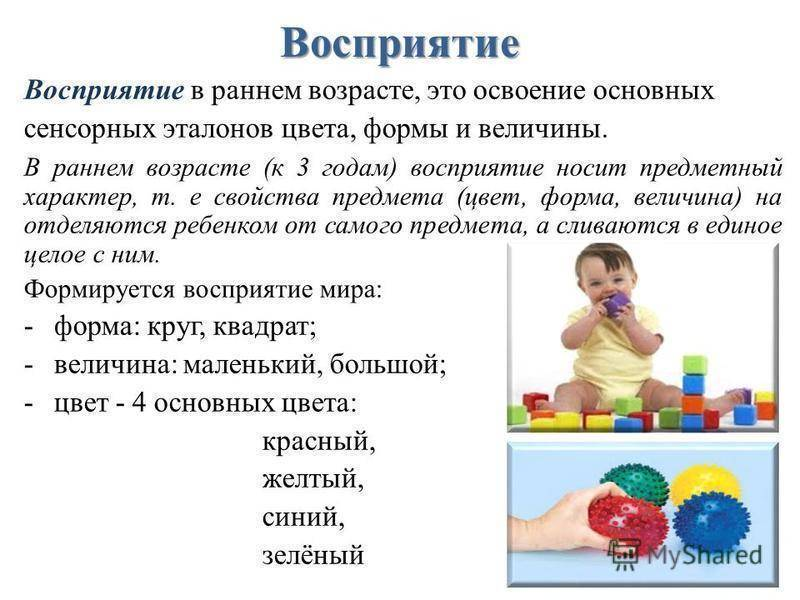 Как научить ребенка различать цвета? методики и полезные советы   развитие ребенка
