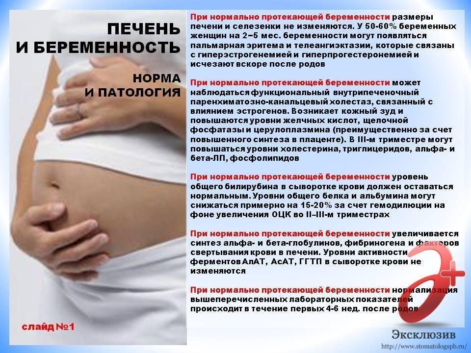 Линекс при беременности на ранних сроках, во 2 и 3 триместрах: можно ли пить?