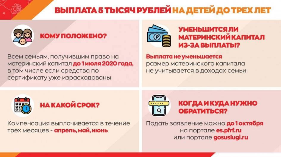 Путинские выплаты при рождении первого и второго ребенка: что это такое, кому положены, как оформить
